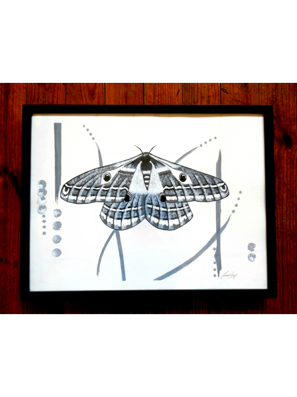 Black and White Contemporary Modern Wall Art Emperor Moth Framed Painting 18x24