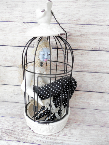 Butterfly and the Birdcage